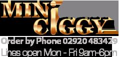 miniciggy.com