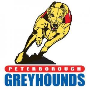 peterboroughgreyhounds.com
